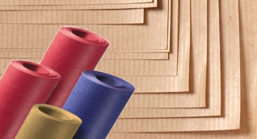 Sangal Papers Ltd  – Manufacturing Papers Based on Customer Needs