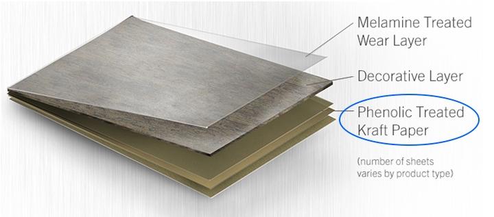 absorbent kraft paper1