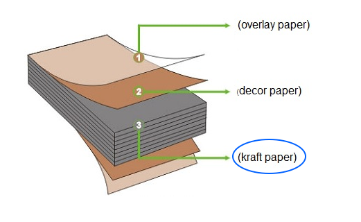 absorbent kraft paper2